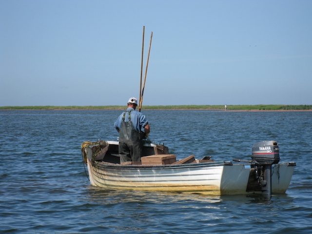Fisherman in PEI