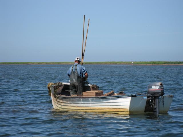 Fisherman in PEI