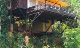 Golden Triangle Tented Camp Four Seasons