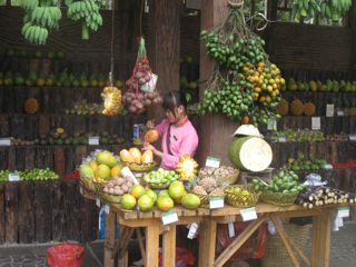 Hainan Island, China's tropical island, tropical fruit