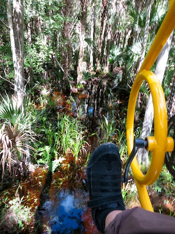 PerehudoffOrlando Florida EcoSafaris Cypress Canopy Cycle Oct 2012 Orlando undiscovered