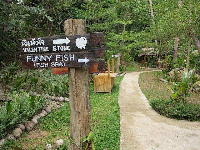 Koh Samui Valentine stone and fish spa