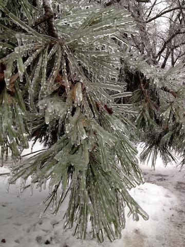 Toronto ice storm emergency