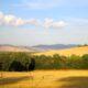 Cycling in Tuscany beautiful fields