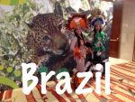 Brazil Travel Tips