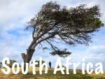 South Africa Travel Tips