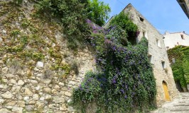 One day in Biot France