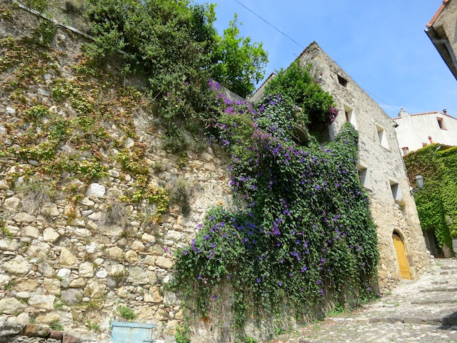Flowers and stone walls in Biot France