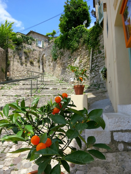 Winding lanes in Biot South of France