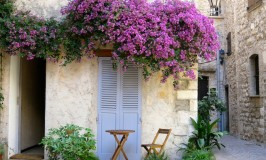 Things to do in the South of France, rent a villa