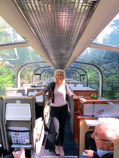 On the Rocky Mountaineer scenic train car