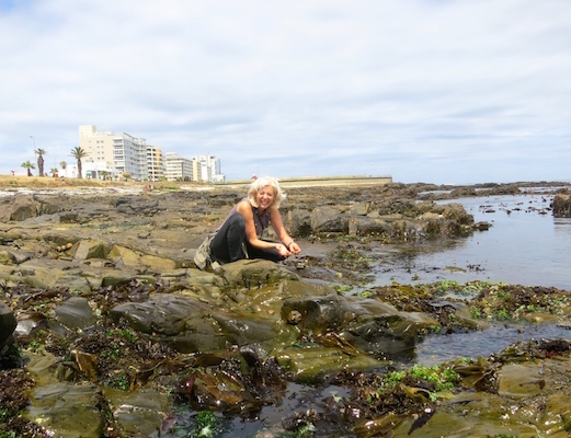 What to do in Cape Town food foraging Table Bay Hotel