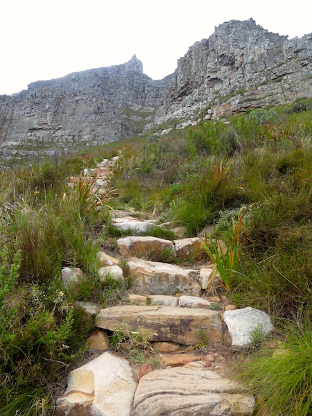 What to do in Cape Town, hike Table Mountain