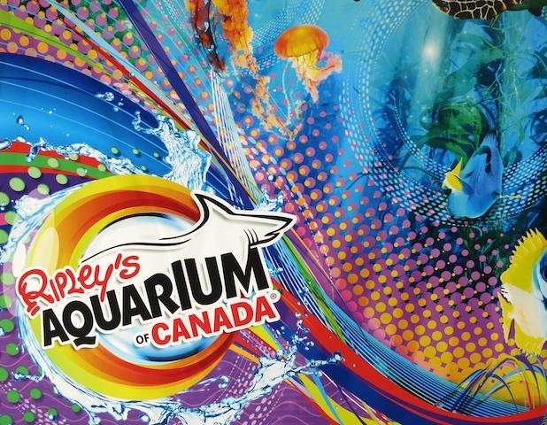 Ripley's Aquarium Toronto picture