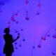 Ripley's Aquarium in Toronto, jellyfish
