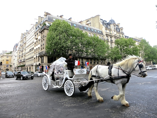 In the footsteps of Coco Chanel in Paris, horse and carriage
