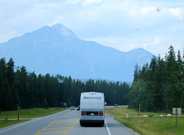 Road trip, Icefields Parkway tour with Brewster Travel Canada