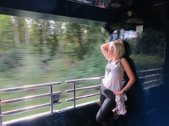 Romantic train ride Wandering Carol, Rainforest to Gold Rush route
