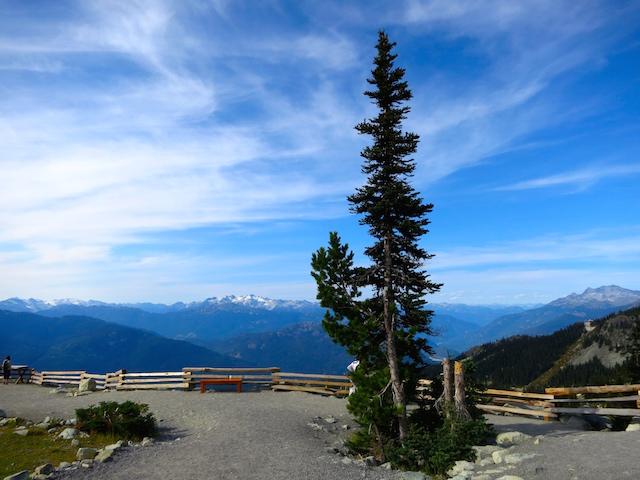 Peak to Peak Whistler ride to Blackcombe