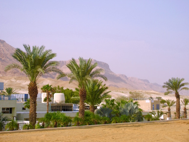 Israel Dead Sea Hotels