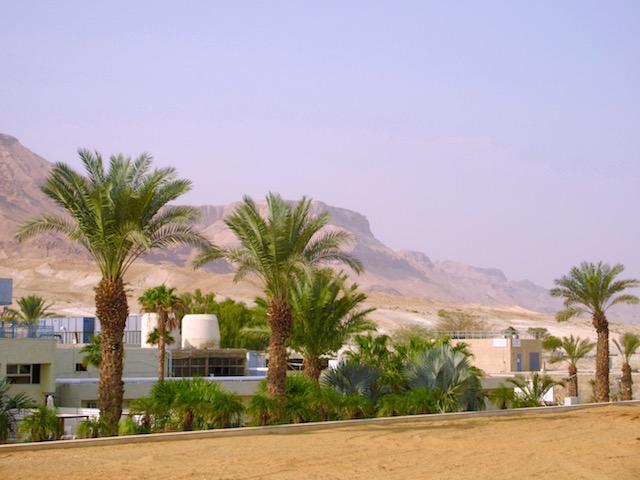 Israel Dead Sea Hotels