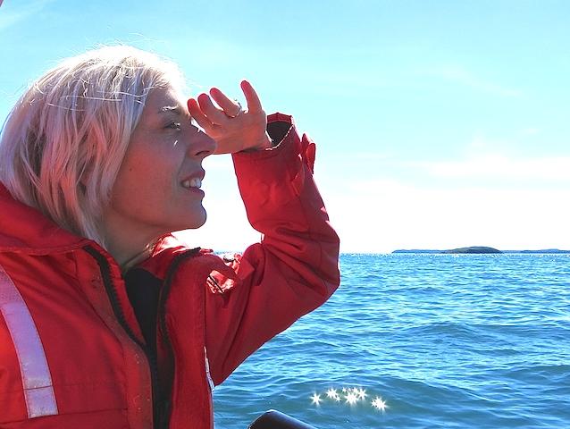 Soft adventure, whale watching New Brunswick