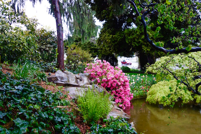 A little known tourist attraction at Evian les Bains, the Japanese Garden
