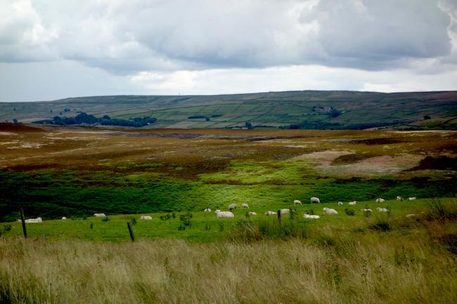 Bronte moors Haworth England