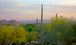 Scottsdale mountain biking adventure: Four Seasons Troon North