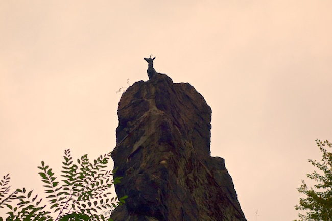 deer-jump-statue-karlovy-vary-walks