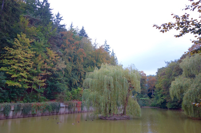 where-to-walk-in-karlovy-vary-little-versailles
