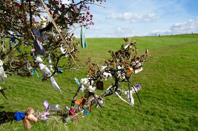 Fairy tree at Hill of Tara