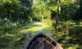 Boyne Canal boat tour and the Battle of the Boyne
