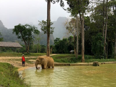 Elephant Hills luxury tented camp Thailand