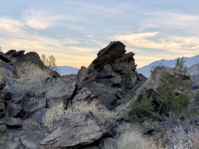 Palm Springs Museum Trail