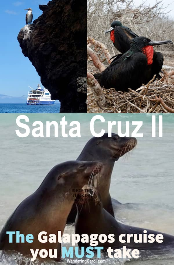 Galapagos cruise photo collage with seals, birds and cruise ship