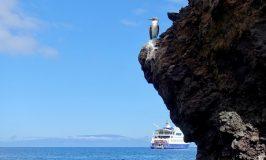 Galapagos cruise review of the Santa Cruz II