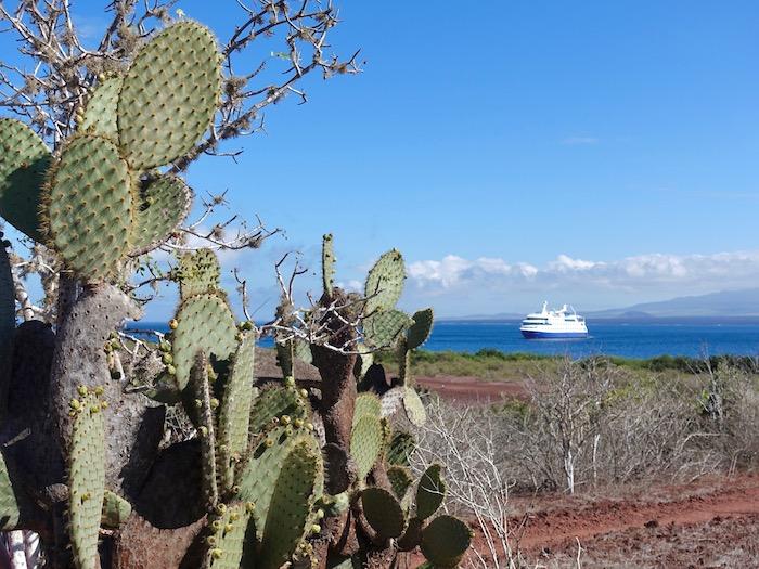 Rabida Island Galagpagos
