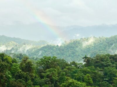 Cloud forest, Mashpi Lodge review