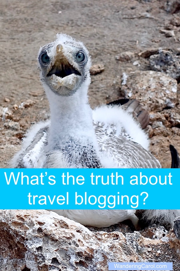 What is the truth about travel blogging? Are travel blogs useful? Honest? Here's what you need to know.