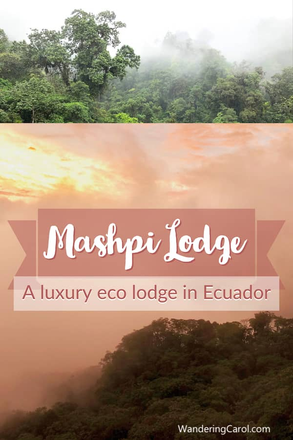 Sunset and rainforest images of Mashpi Lodge in Ecuador