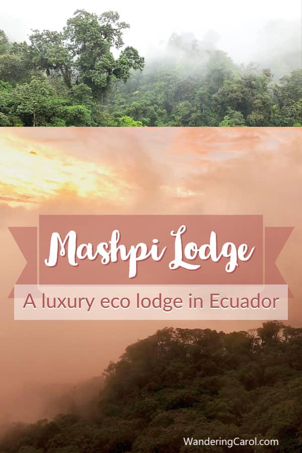 Sunset and rainforest images of Mashpi Lodge in Ecuador