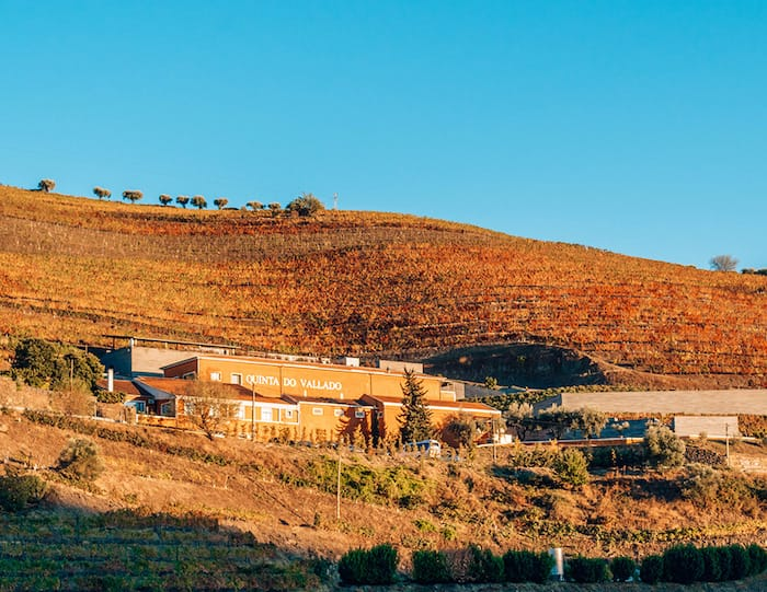 Winery near Porto in the Douro Valley