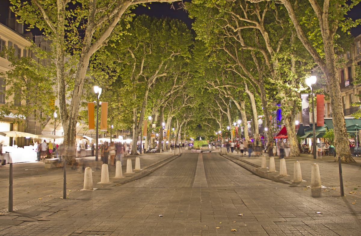plane trees along the main street in Aix-en-Provence