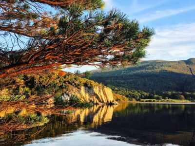 fall scene of forest and lake in killarney national park