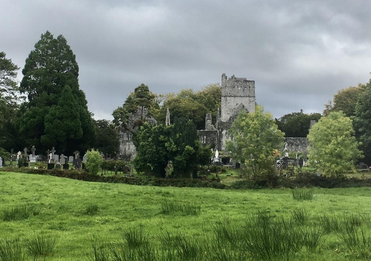 muckross abbey and graveyard
